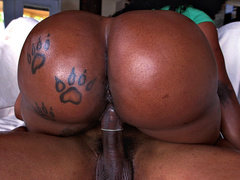 Dark skinned babe Diamond Monroe plants her big ass on his rod