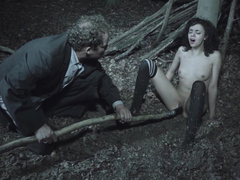 A Lars von Trier film